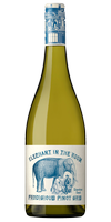 Elephant In The Room Pinot Gris (6pk)